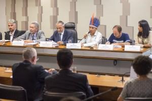 Em audiência com eurodeputados, organizações brasileiras denunciam violações de direitos indígenas e quilombolas