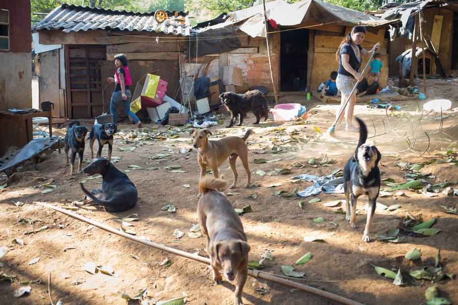 ESTADÃO: Justiça suspende portaria que reduzia reserva Guarani no Jaraguá