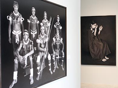 "STF: STF expõe obras da mostra ""Amazônia"", do fotógrafo Sebastião Salgado"
