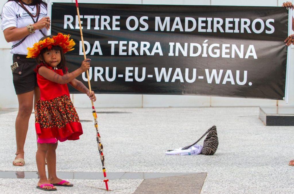 CENTRO INDIGENISTA MISSIONÁRIO: Povo Uru-Eu-Wau-Wau e Associação Kanindé denunciam invasões a TIs de Rondônia