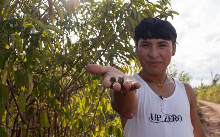 AMAZÔNIA: Minidocumentário Antes da Chuva estreia em plataformas online