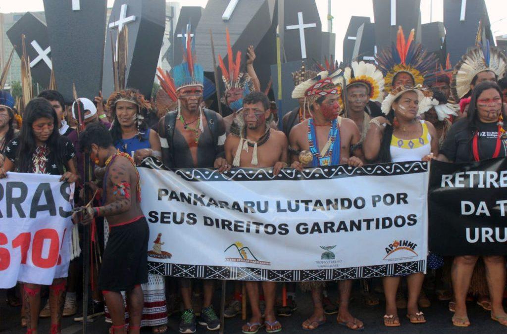 AMAZÔNIA REAL: Desintrusão de não-índios sofre retrocesso no território Pankararu