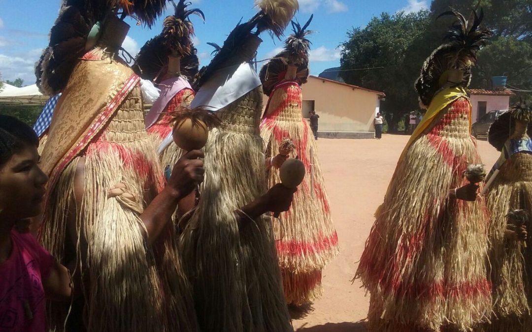 CIMI – Conselho Indigenista Missionário: Desintrusão da TI Pankararu é suspensa e aguarda julgamento do TRF-5 para ser concluída