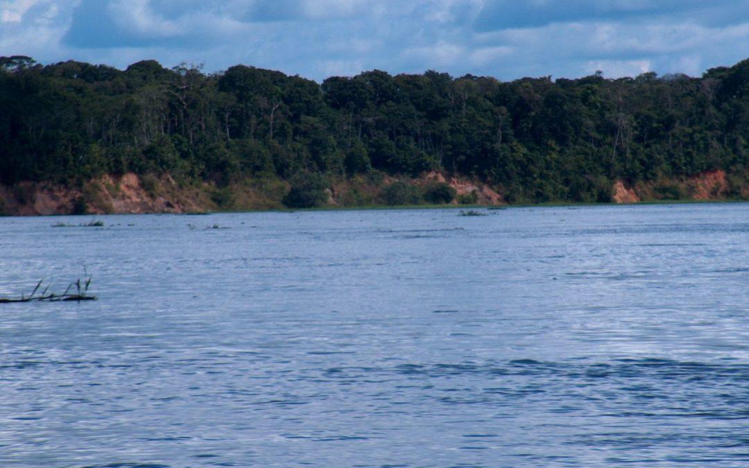 AMAZÔNIA: Idosa e neta de 9 anos desaparecem em área de floresta em comunidade indígena no interior do AM