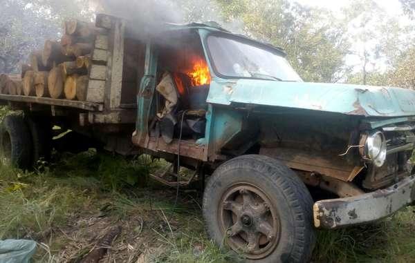 SURVIVAL: Defensor Ambiental Indígena morto na Amazônia brasileira