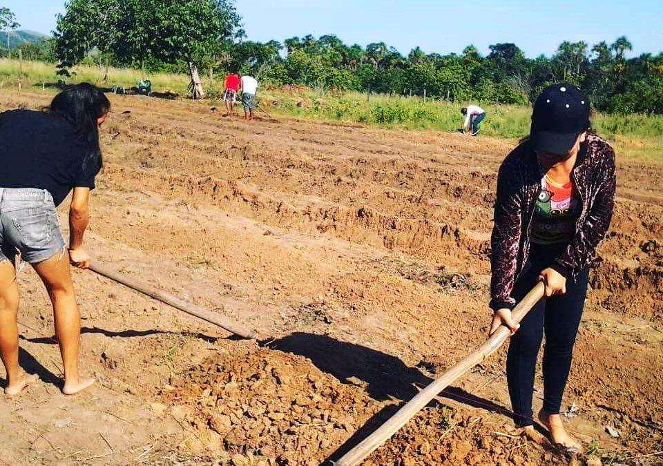 CIR: Jovens da comunidade Morcego/ Região Murupú desenvolvem projeto de Sustentabilidade