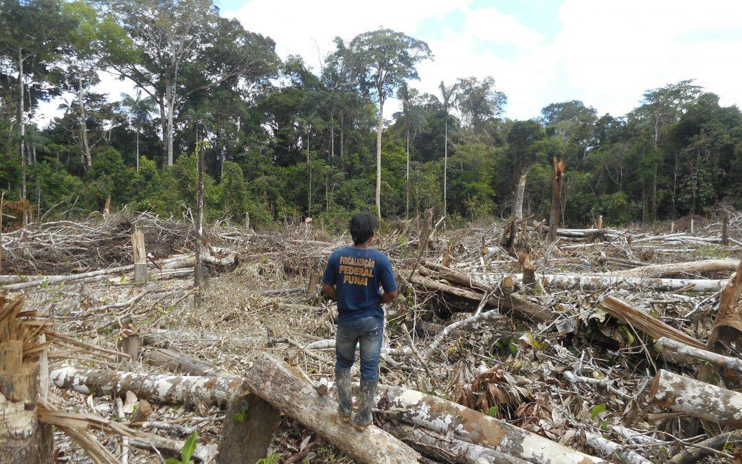 FUNAI: Ações da Funai, Exército e comunidades indígenas repreendem atuação de criminosos no Vale do Javari