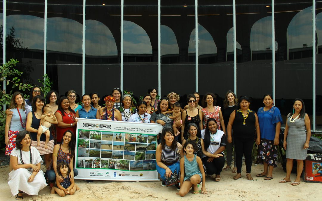 FUNAI: Carta dos Povos Indígenas do Cerrado e da Caatinga – Desafios para a Gestão Ambiental e Territorial das Terras Indígenas