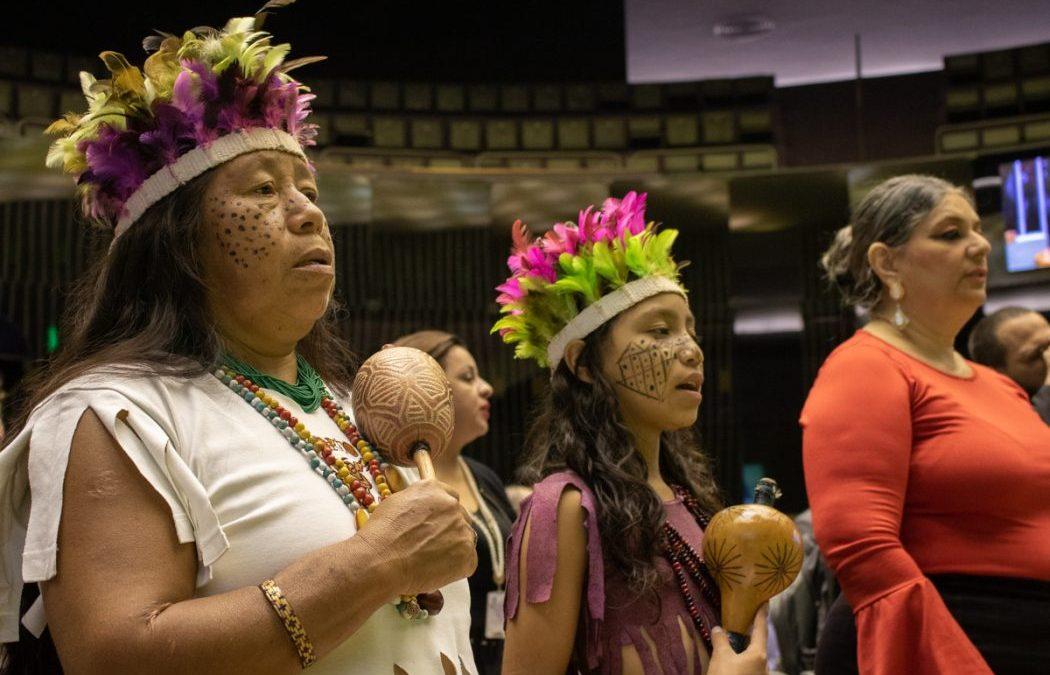 CIMI: Povos indígenas realizam marcha em Brasília contra projeto do governo Bolsonaro que abre terras tradicionais para exploração