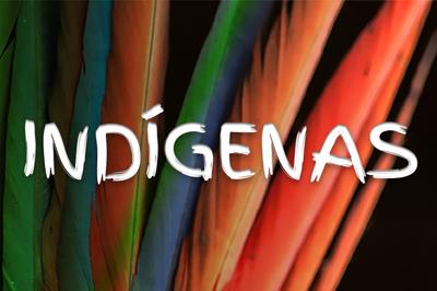 PGR: Em nota pública, MPF critica projeto de lei que permite mineração em terras indígenas