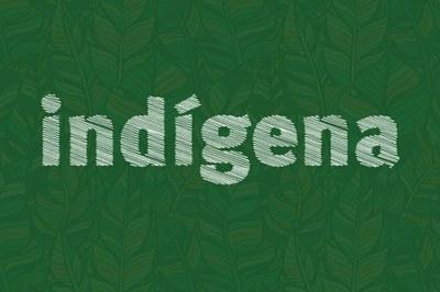 MPF: MPF pede à Funai cestas básicas para índios do Oeste e Sudoeste paranaense