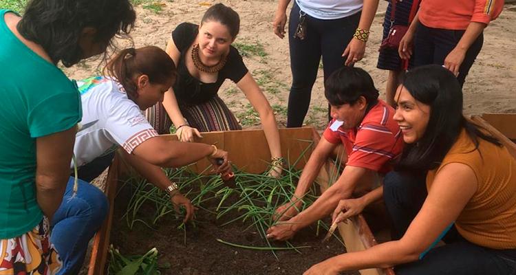 MINISTÉRIO DA SAÚDE: Horta melhora alimentação de indígenas na CASAI Manaus