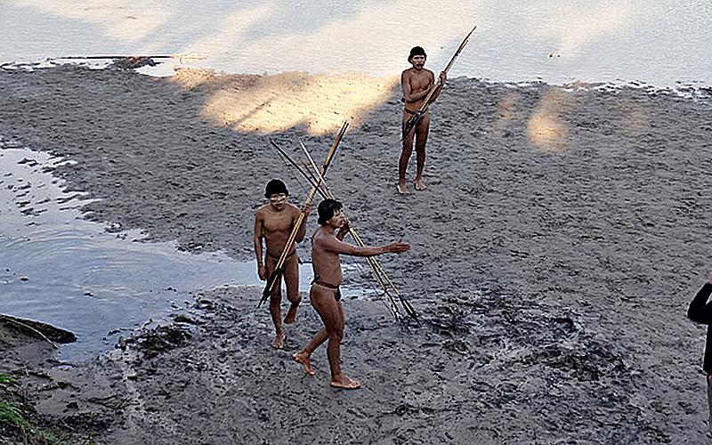 "BRASIL DE FATO: Covid-19: ""Tenemos miedo de ser diezmados"", dice indígena brasileña Nice Gonçalves"