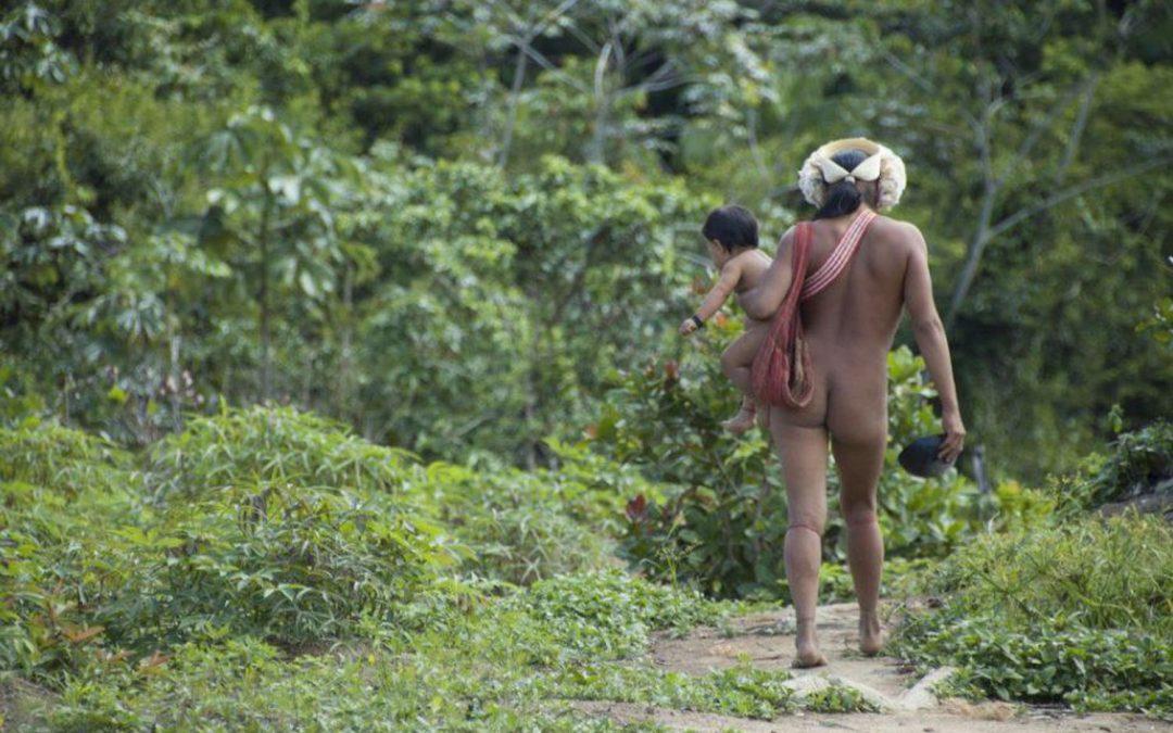 AMAZÔNIA NOTÍCIA E INFORMAÇÃO: Coronavírus deixa povos indígenas em alerta, após dois casos suspeitos