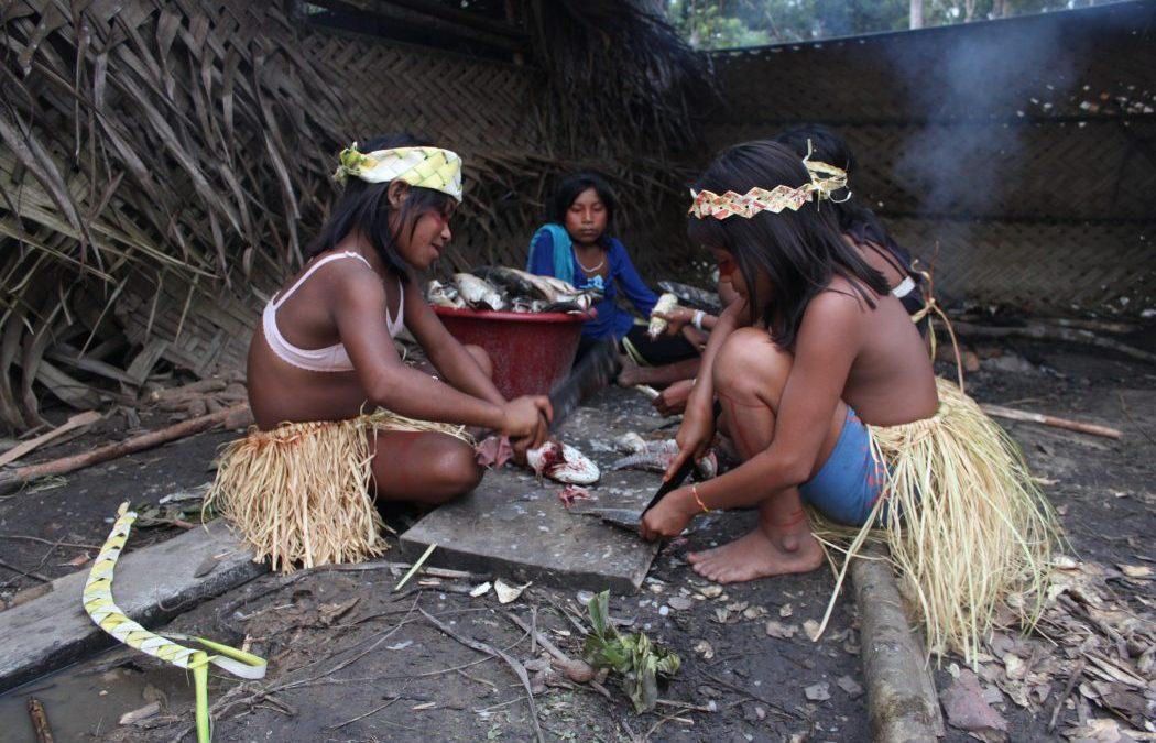 CIMI: Indígenas temem proliferação de coronavírus com entrada ilegal de evangélicos na TI Vale do Javari