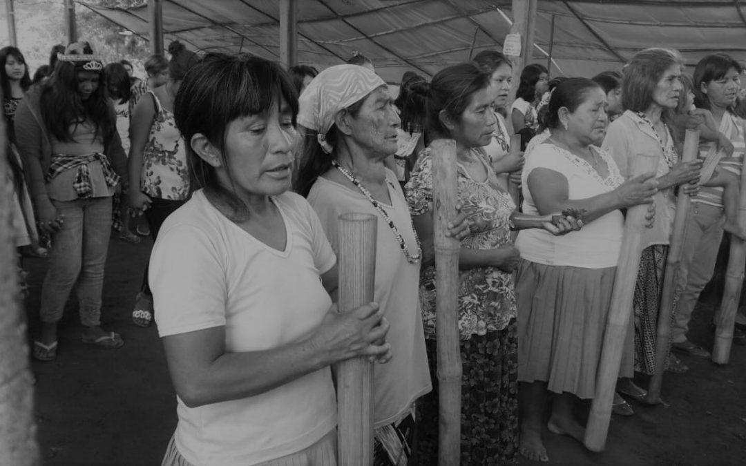 INA: Pandemia anti-indígena: Funai atua contra os direitos territoriais guarani e anula Terra Indígena