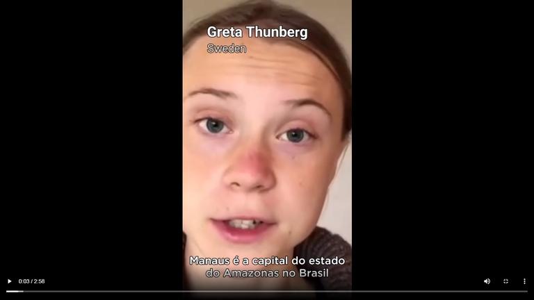 GREENPEACE: Voluntários contra o PL da Grilagem e apoio de Greta Thunberg à Manaus