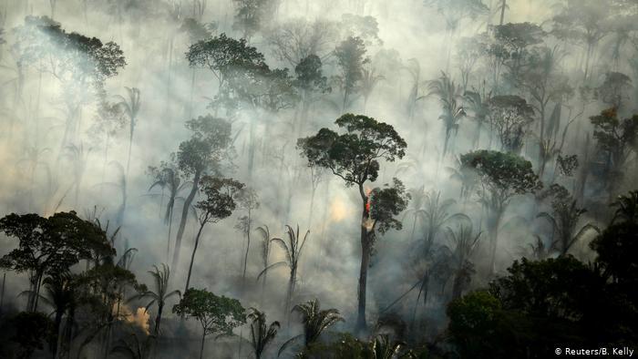 AMAZÔNIA NOTÍCIA E INFORMAÇÃO: Mourão recria Fundo Amazônia, mas Alemanha e Noruega não garantem recursos