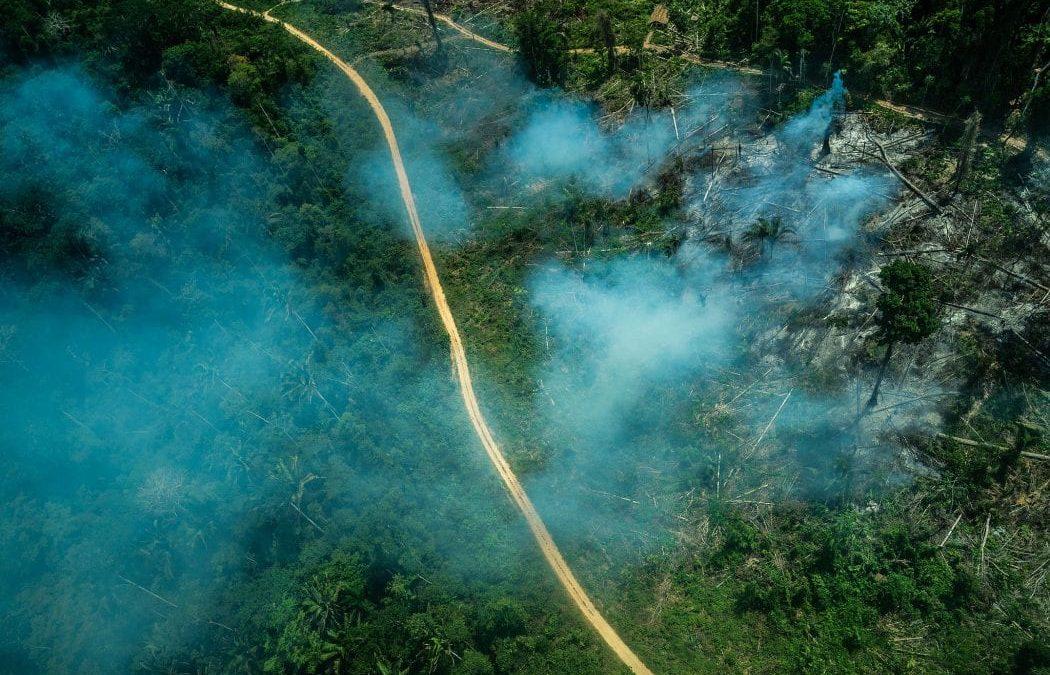 CIMI: Organizações ambientalistas e camponesas manifestam sua posição sobre o PL da grilagem