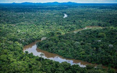 SENADO: Lei facilita regularização de terras cedidas pela União no Amapá e em Roraima