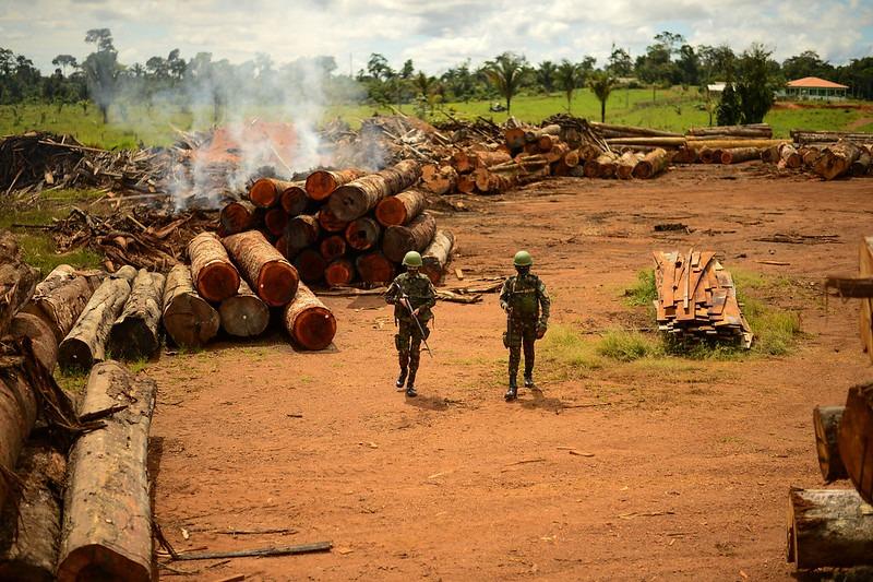 DEFESA: Em um dia, Verde Brasil 2 aplica mais de R$ 12 milhões em multas