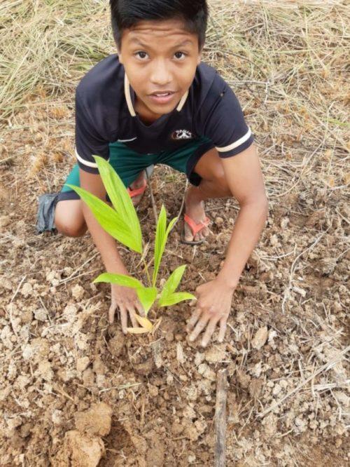 IEB: Mutirão na aldeia indígena Pupunha encerra primeira fase de plano de ação para gerar renda e segurança alimentar à comunidade