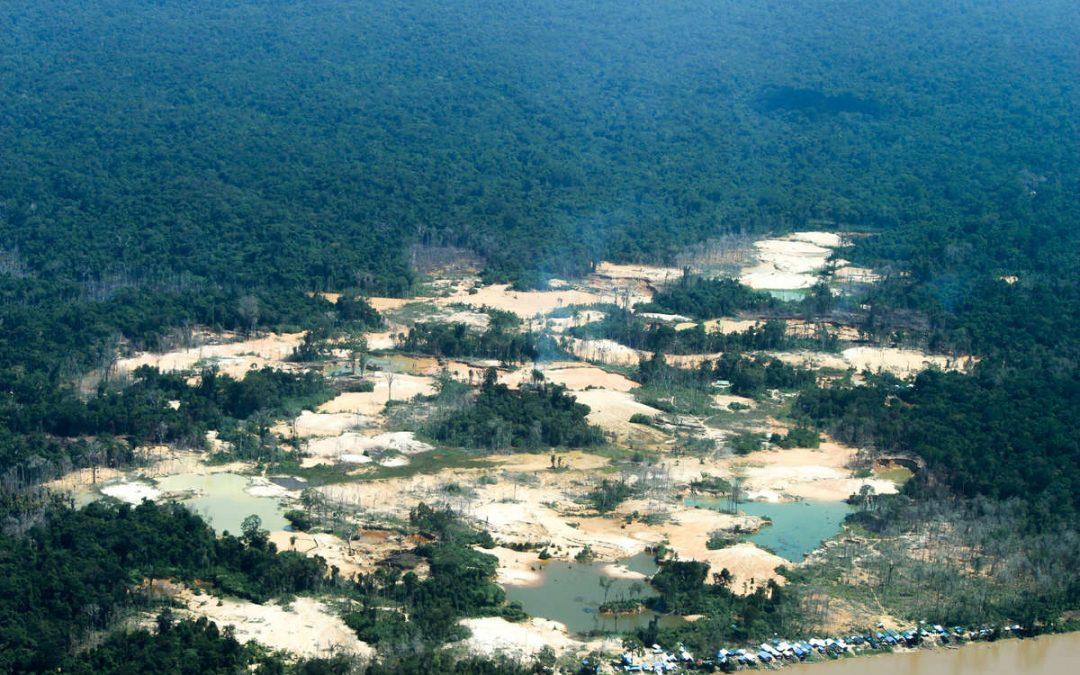 SURVIVAL: #ForaGarimpoForaCovid: lideranças do povo Yanomami lançam campanha global