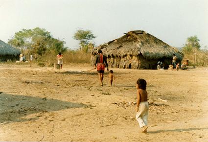 """JORNALISTAS LIVRES: Governo de MT quer aproveitar a Covid pra """"passar a boiada"""" em terras indígenas"""