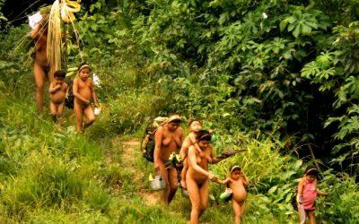 FOLHA DE SÃO PAULO: Com 2 mortes em 3 dias, Covid-19 ameaça povos isolados na Amazônia