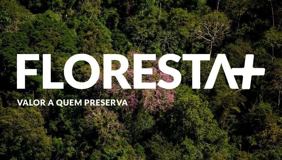 MMA: MMA institui programa Floresta+ para remunerar quem protege a mata nativa