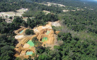 AMAZÔNIA NOTÍCIA E INFORMAÇÃO: Em plena pandemia, extração de ouro aumenta na Amazônia