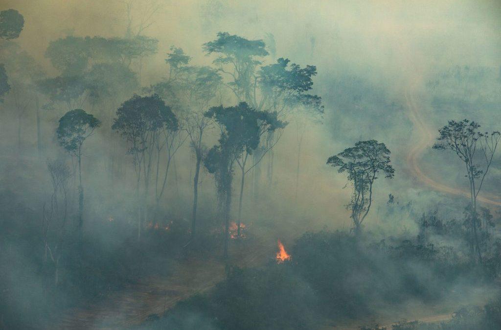 """AMAZÔNIA NOTÍCIA E INFORMAÇÃO: Bolsonaro diz que existem """"opiniões distorcidas"""" sobre as ações do governo para proteger a Amazônia"""