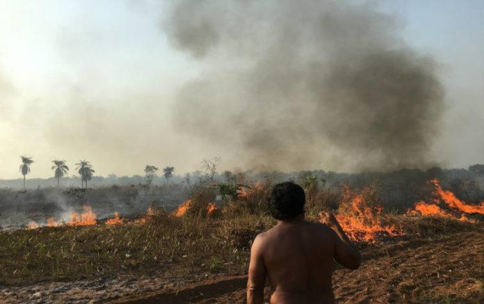 OPAN: Propriedades que tentam legalização dentro de terras indígenas em MT registraram incêndios e desmatamento