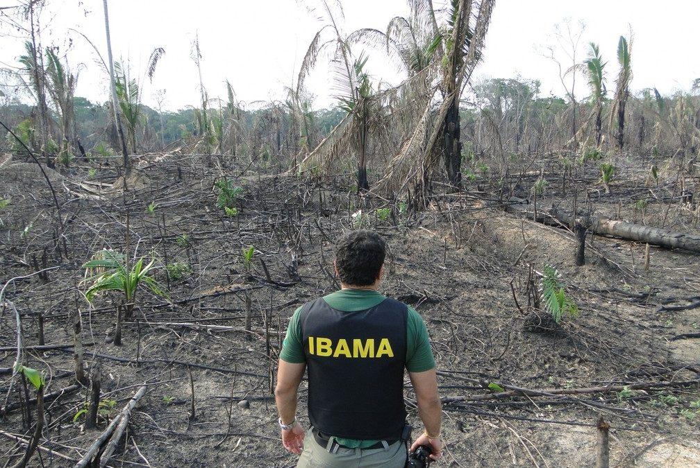 DE OLHO NOS RURALISTAS: Desmatadores entregam carta a Mourão pelo fim do desmatamento