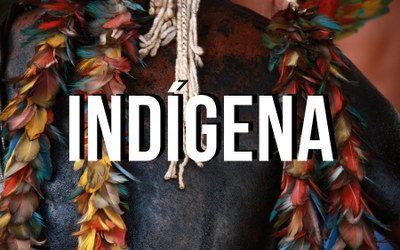 MPF: MPF pede aplicação de multa por omissão do governo federal com indígenas do Alto e Médio Rio Negro (AM) em descumprimento de decisão judicial