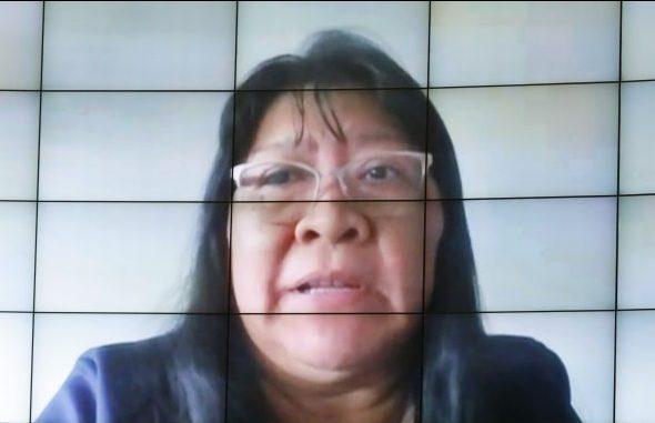 CÂMARA: Oposição cobra derrubada de vetos à prevenção de Covid-19 entre indígenas