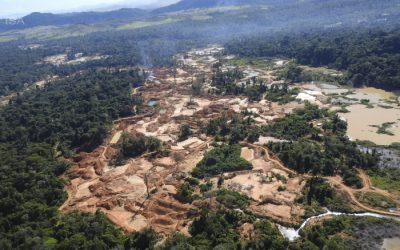 ISA: Epidemia de garimpo ilegal ameaça o Xingu