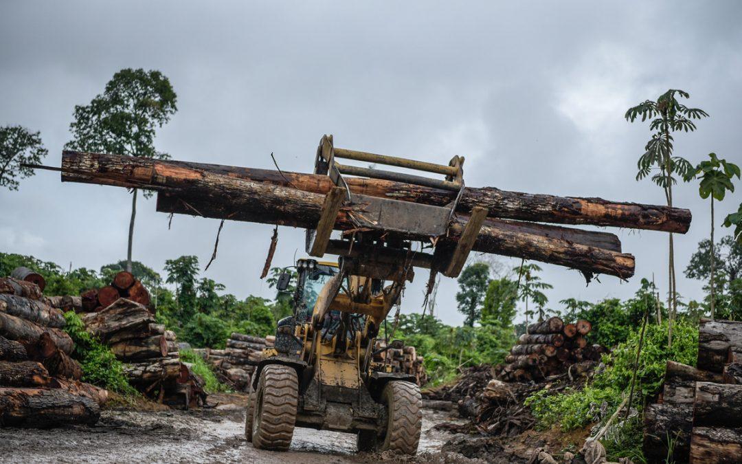 AGÊNCIA PÚBLICA: Governo Bolsonaro reduz multas em municípios onde desmatamento cresce