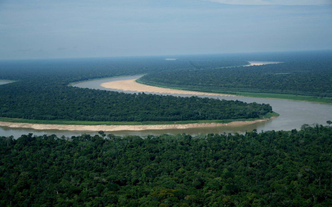 AMAZÔNIA REAL: Região Trans-Purus, a última floresta intacta: 2 – A ameaça do Ramal de Tapauá