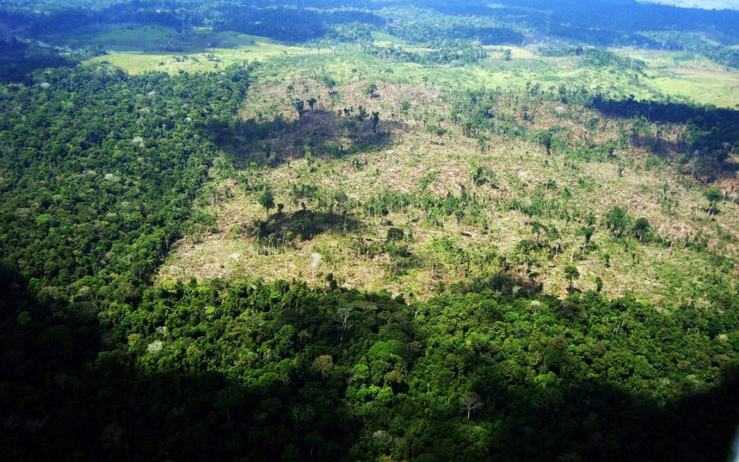 RBA: Terras indígenas da Amazônia ajudam a regular o clima e reduzem aquecimento global