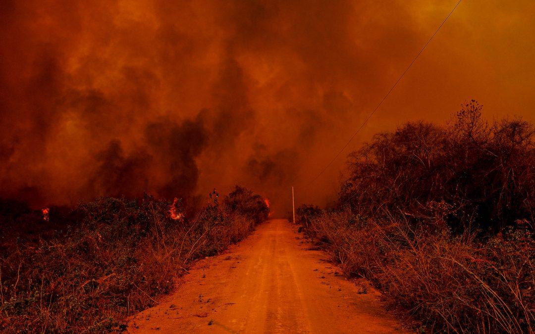 AGÊNCIA PÚBLICA: Incêndios já tomam quase metade das terras indígenas no Pantanal