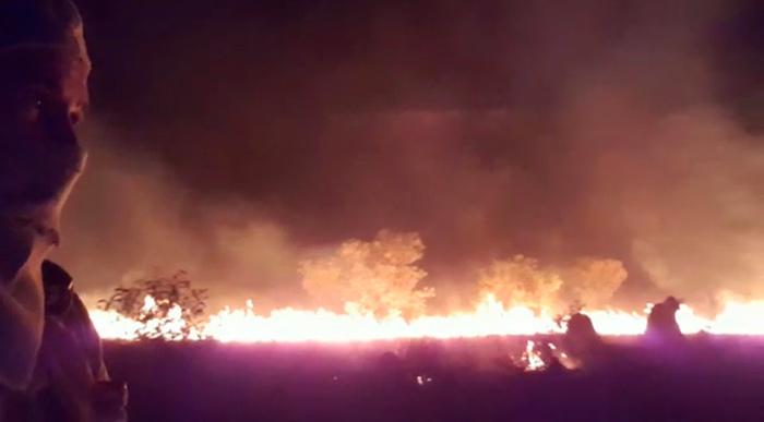 CIMI: Incêndio na Ilha do Bananal coloca em risco vida de indígenas isolados