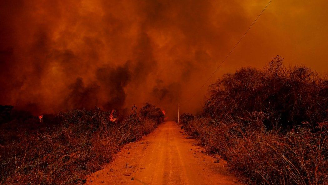 """CIMI: Regionais da CNBB lamentam """"desmonte das instâncias de fiscalização"""" e cobram investigação sobre queimadas no Pantanal"""