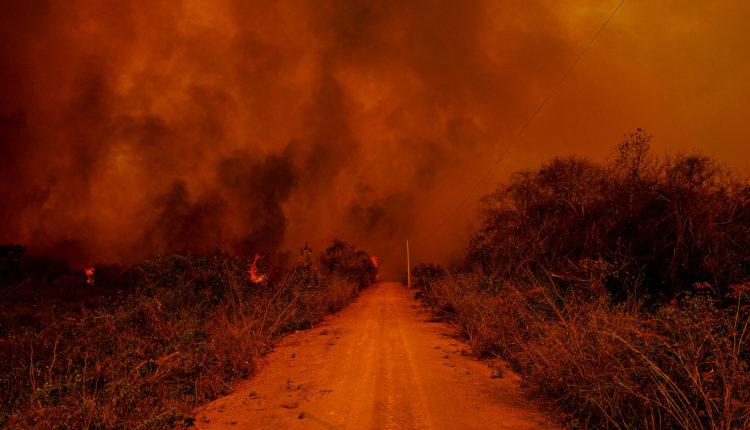 """CONGRESSO EM FOCO: Saiba por que o Brasil pega fogo. Spoiler: """"índio"""" é inocente"""