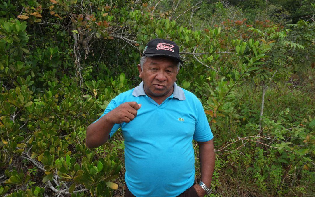 AMAZÔNIA REAL: Com Covid-19, tuxaua-geral do povo Sateré-Mawé luta pela vida