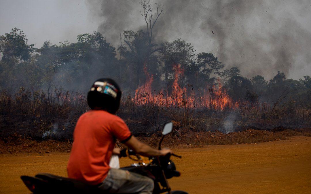 AMAZÔNIA REAL: BR-319 – O começo do fim para a floresta amazônica brasileira
