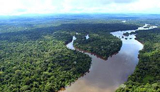 STF: Partidos questionam decreto que altera regras para apuração de infrações ambientais