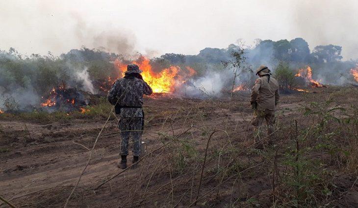 CÂMARA: Frentes parlamentares promovem debate sobre impactos das queimadas na saúde