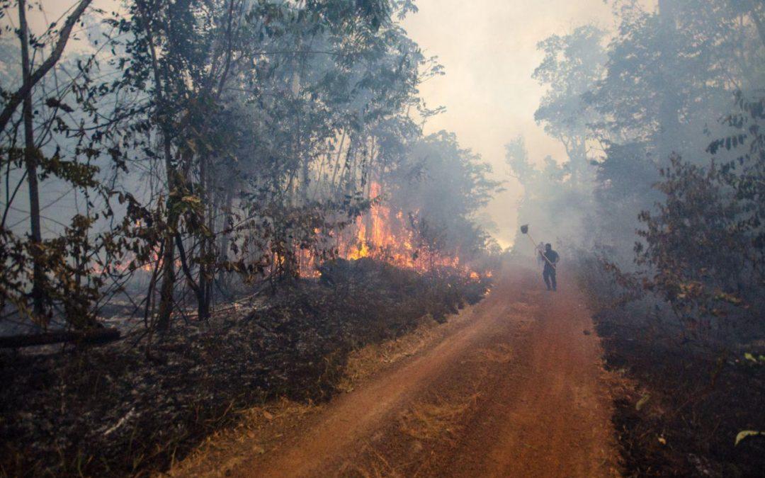 JORNALISTAS LIVRES: O fogo na Amazônia é protocolo