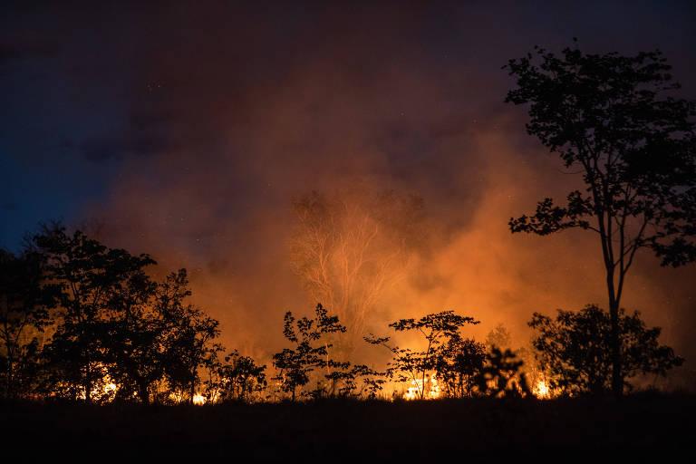 FOLHA DE S. PAULO: Secom lança campanha que fala em interesses 'nem sempre claros sobre preservação da Amazônia'